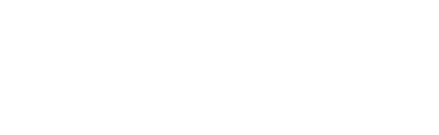 All Ball Pro®
